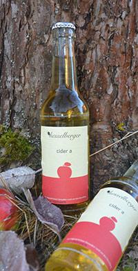 Süd-Fränkischer Cider