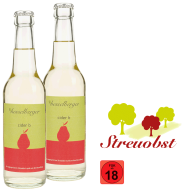 cider b - 2 mal 0,33 Liter Longneck-Glasflasche