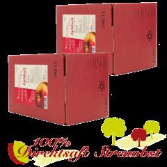 2 mal 5 Liter bag in box Apfel-Direktsaft, natürtrüb, vegan