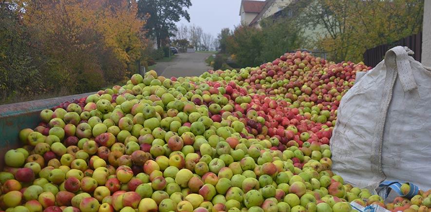 Äpfel am Wagen